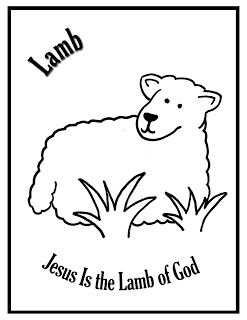 Focus On Jesus Lamb Jesus Is The Lamb Of God Lamb God Jesus
