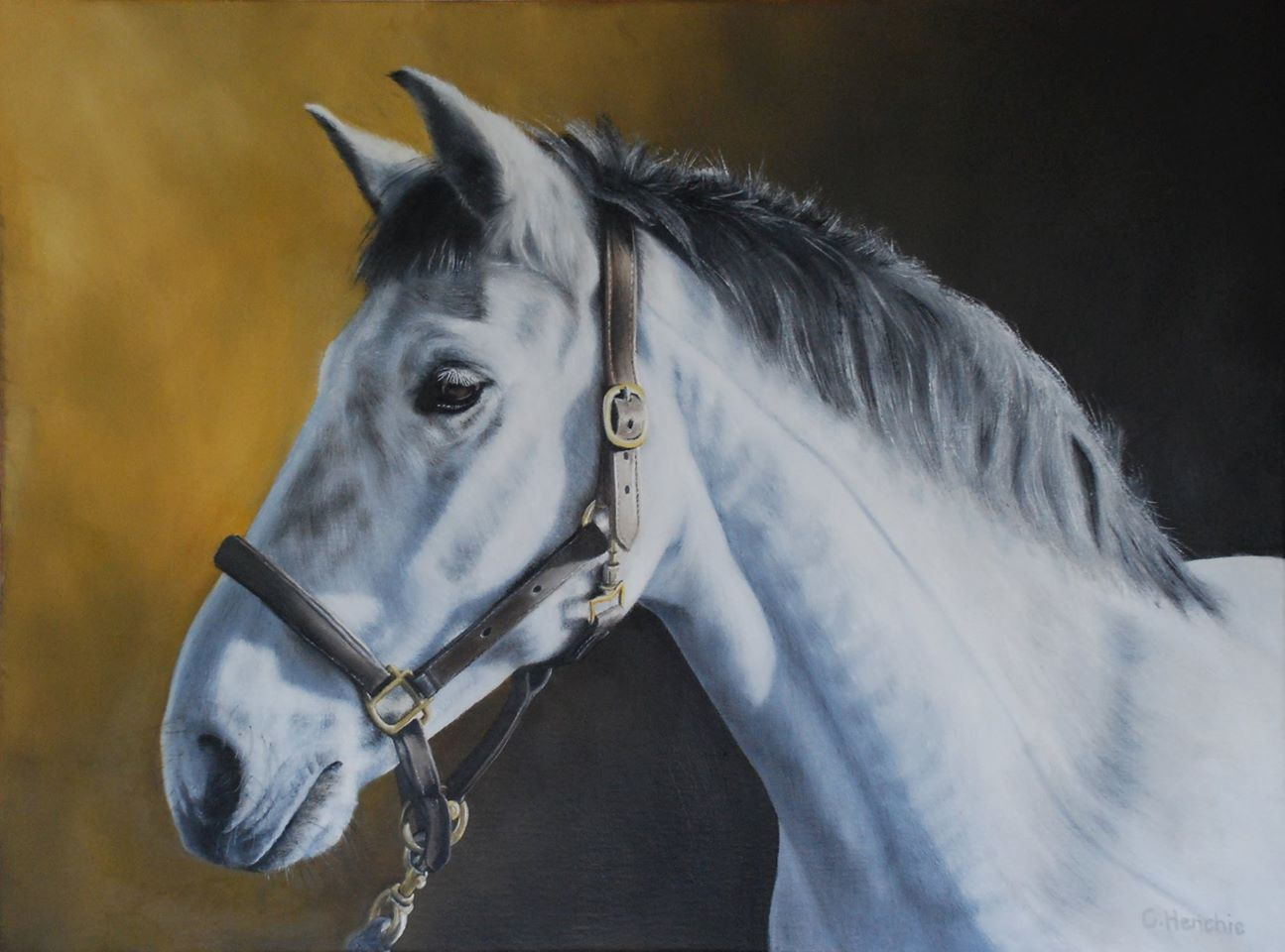 Best Johnny Grey Horse Oil Painting By Catherine Henchie 640 x 480