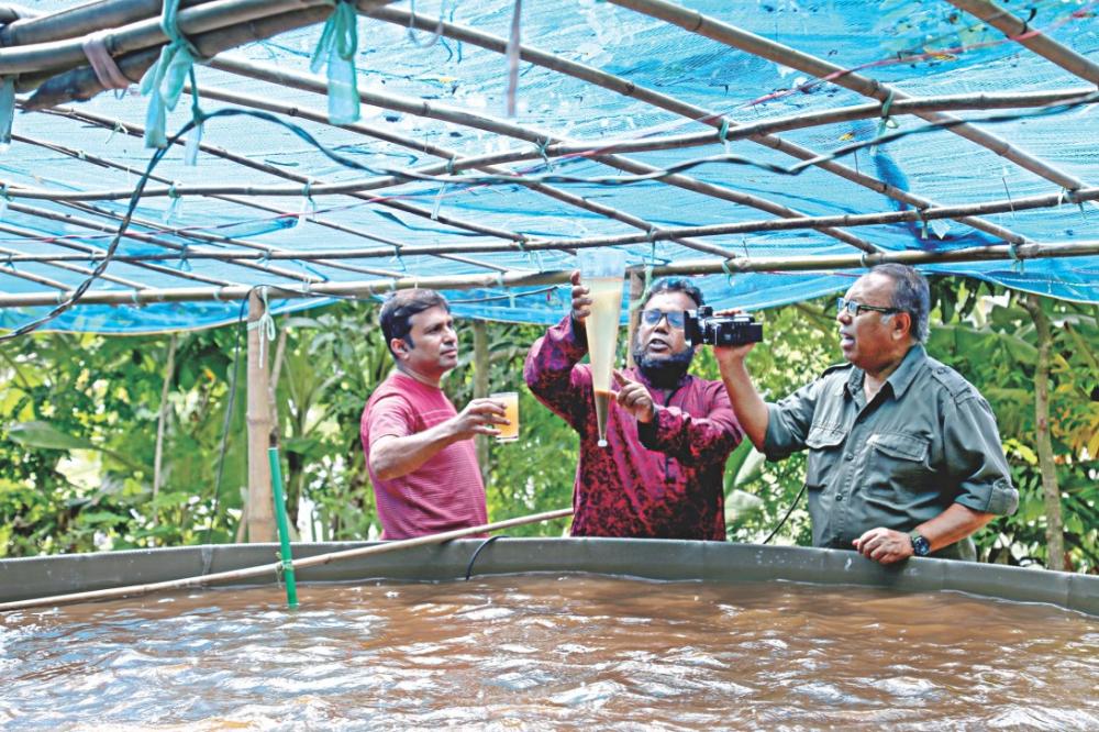 Yard turns into modern fish farm | Fish farming, Fish ...