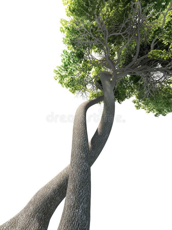 Dna modified tree Dnamodified tree. Transgenic
