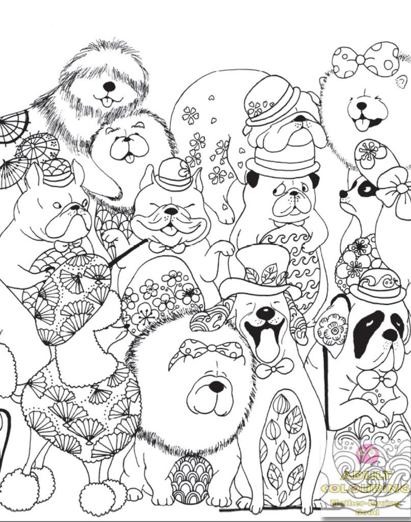 Pin On Animal Adult Colouring Book Collection