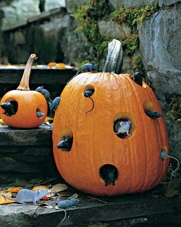 Halloween/Love this idea...only problem is the squirrels around my yard already d this to the pumpkins :)
