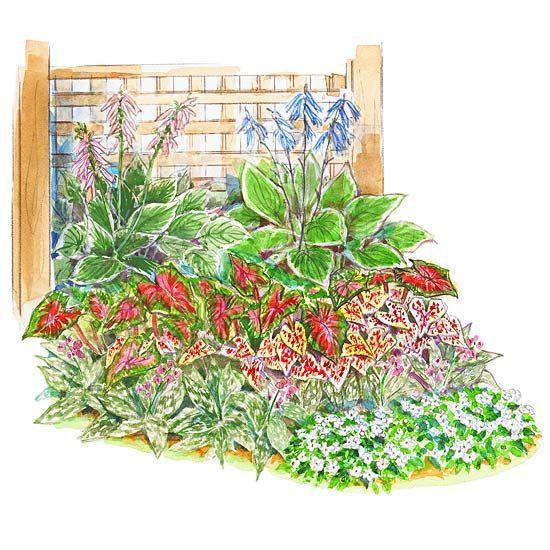 Shaded Flower Garden Ideas garden plans for shady spots | garden planning, elephant ears and