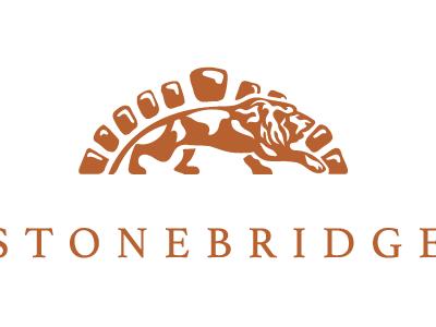 Stone Bridge Colorful Logo Design Logo Design Bridge Logo