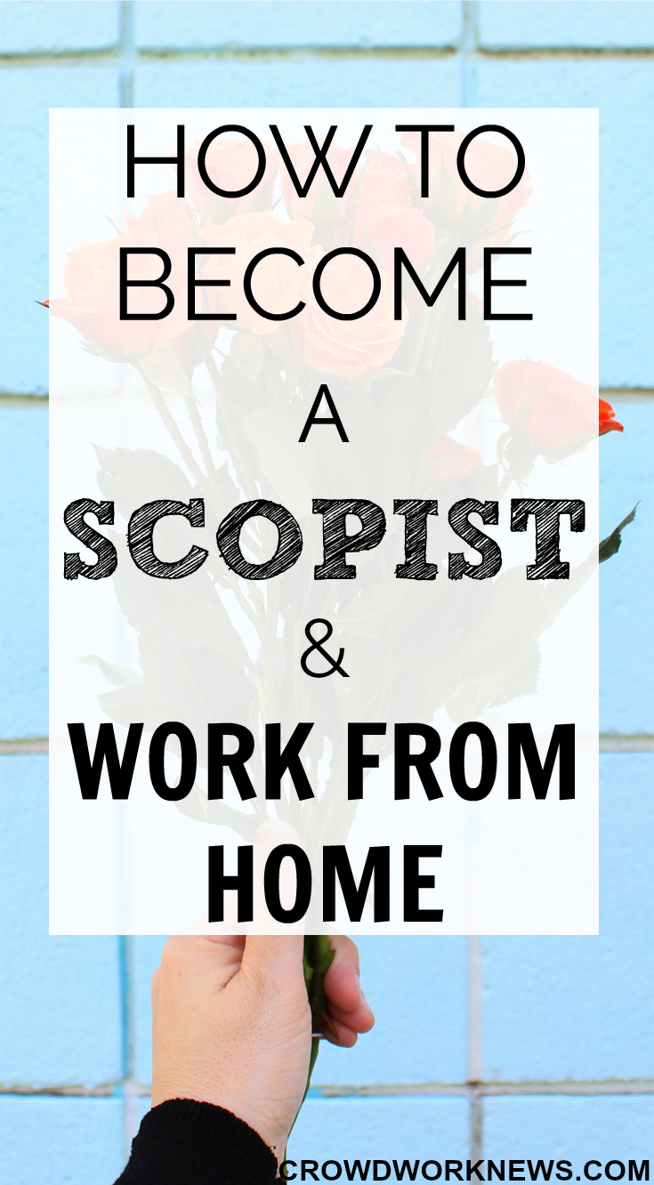 How to Make Money From Home As A Scopist | Career and Business