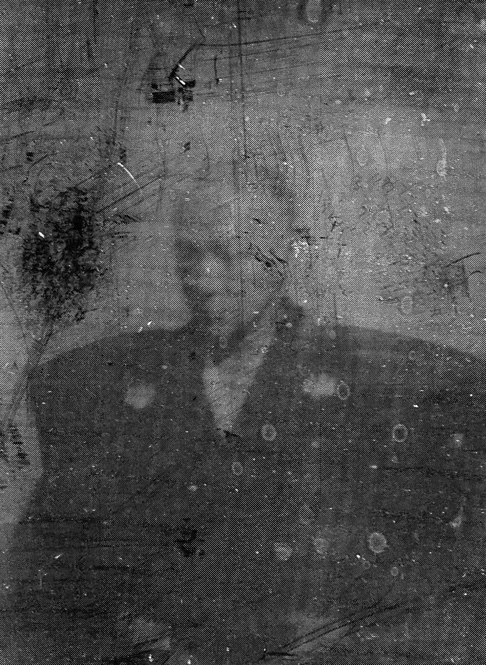 薩摩藩第28代藩主、島津斉彬。安政4年(1857年)9月17日、市来四郎他 ...