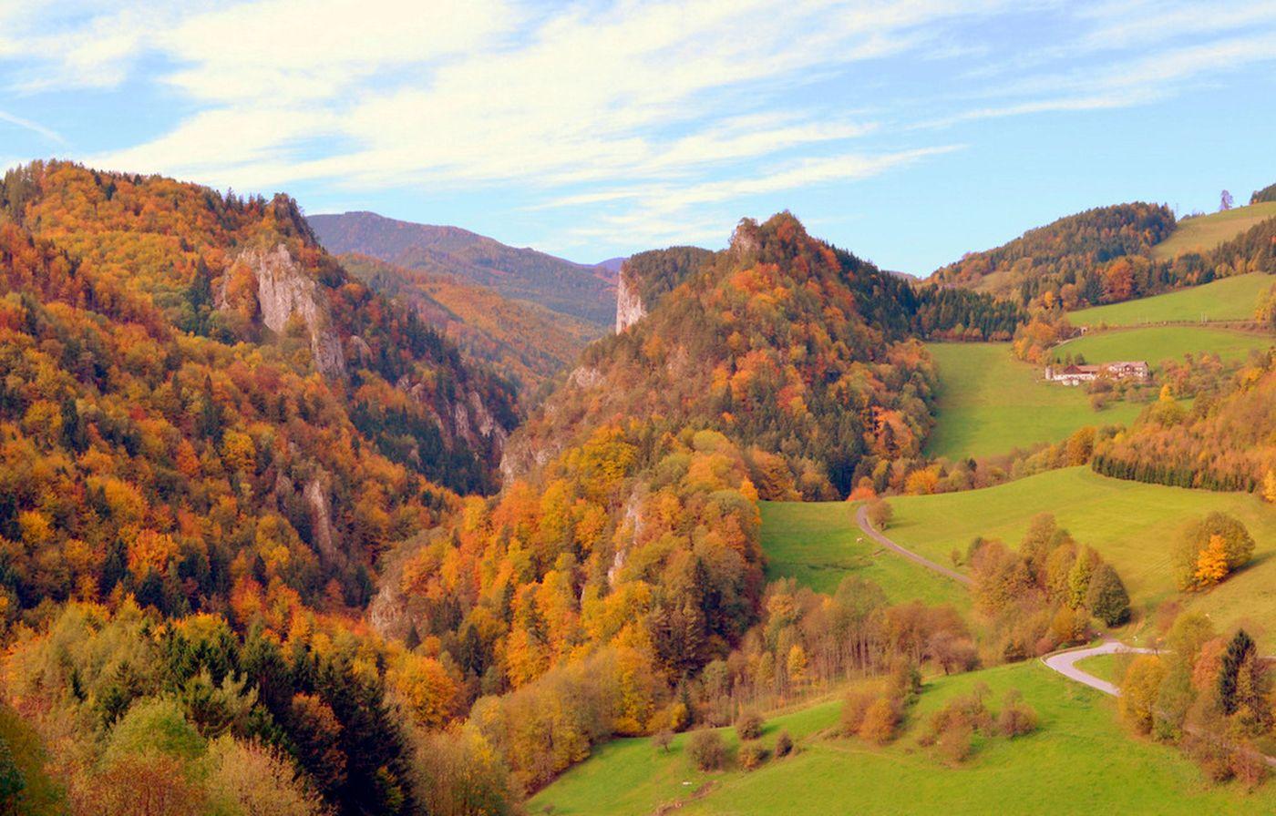 Jesenný Pfeferhof