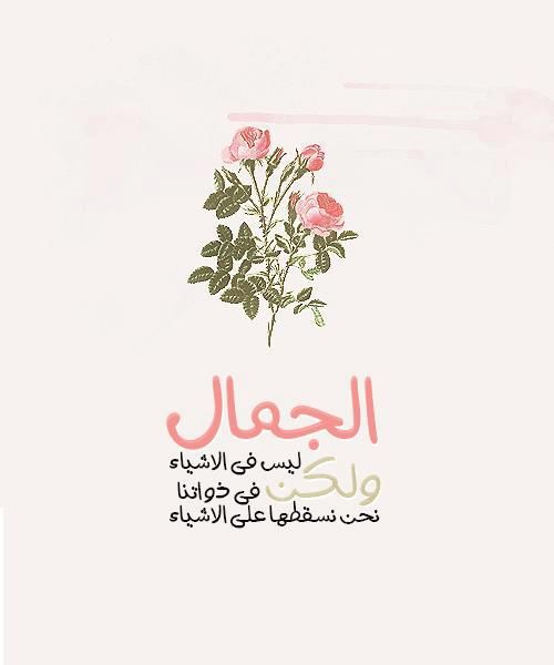 الجمال ليس فى الاشياء ولكن فى ذواتنا نحن نسقطها على الاشياء Photo Quotes Romantic Quotes Quotes