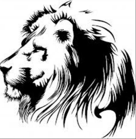 Lion fierce. Piercings tattoos art clipart