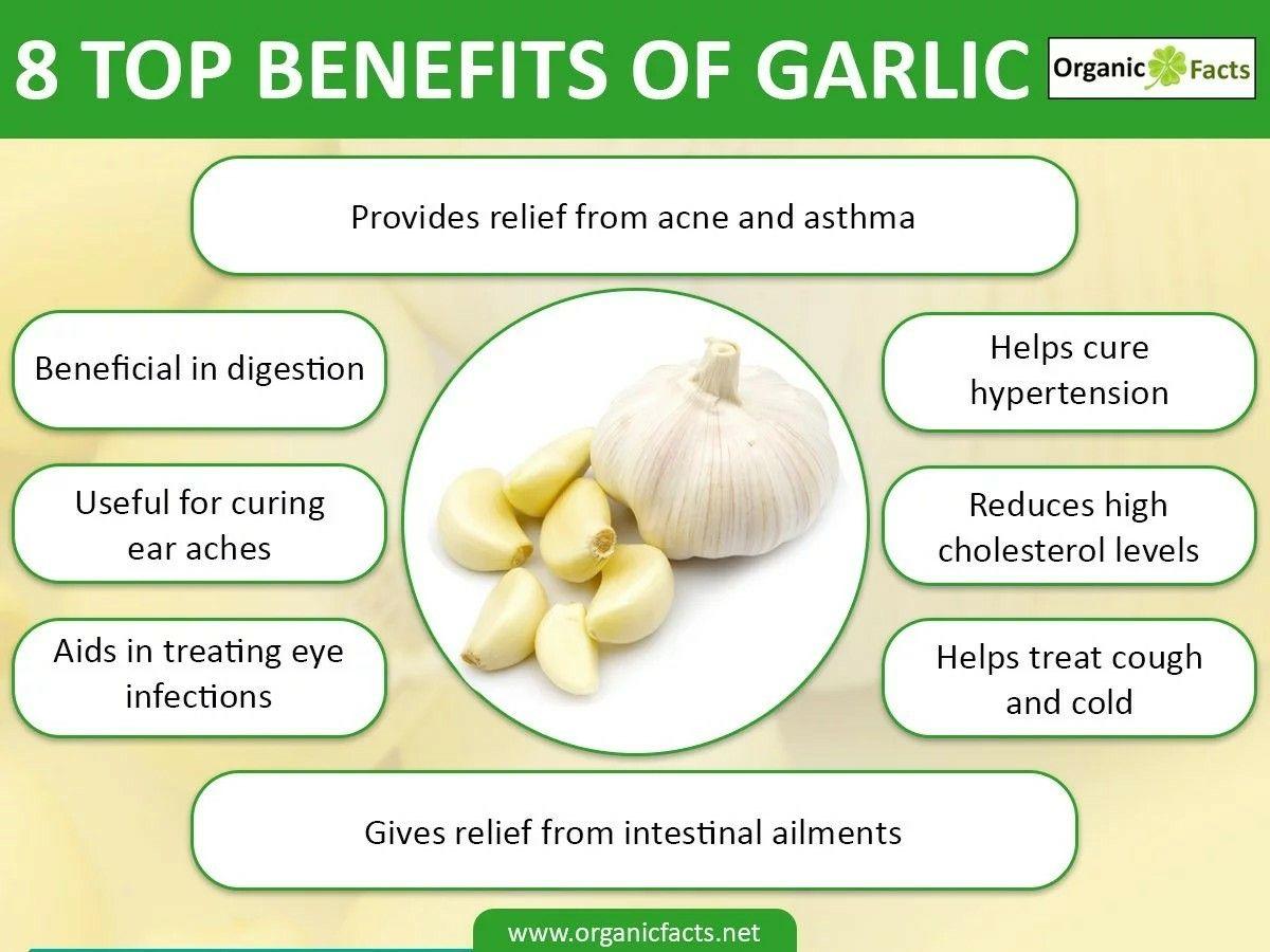 13 interesting benefits of garlic | organic facts | garlic