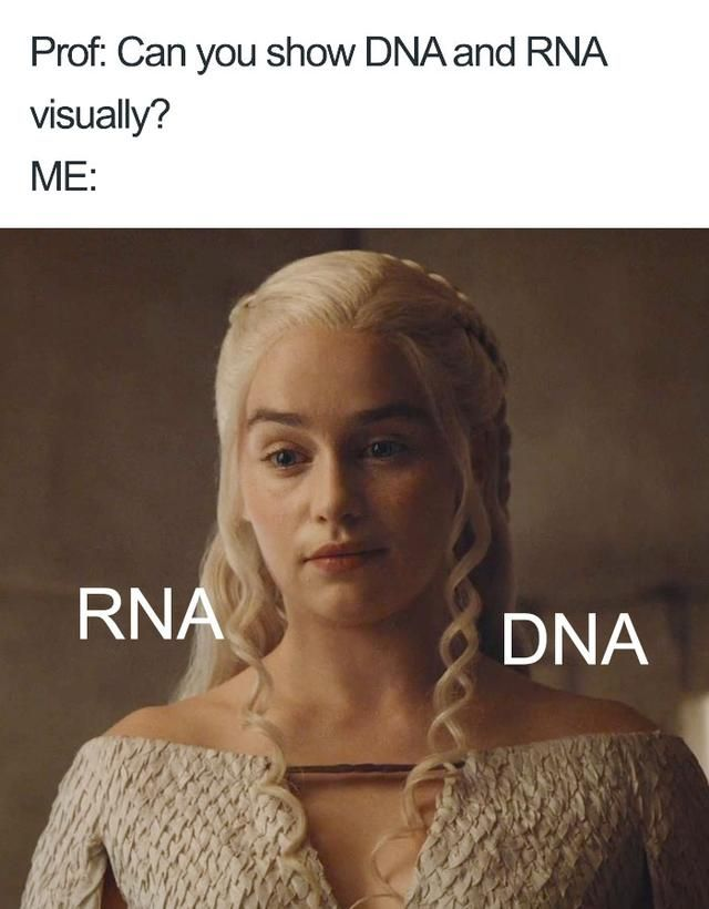 55 Hilarious And Dark Doctor Memes I 2020 Nordhumor Roliga
