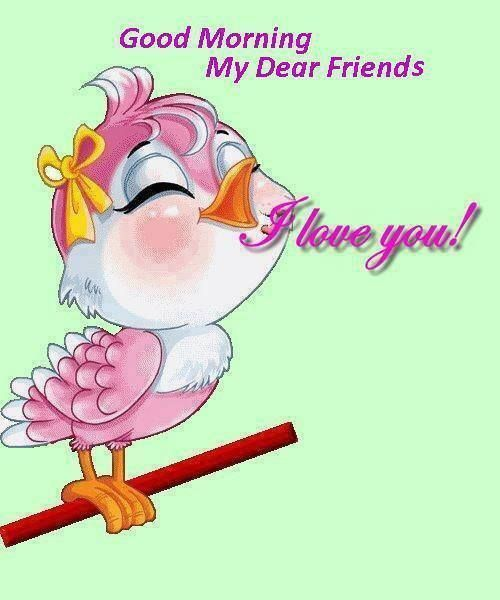 Good Morning My Friends I Love You Morning Good Morning Morning