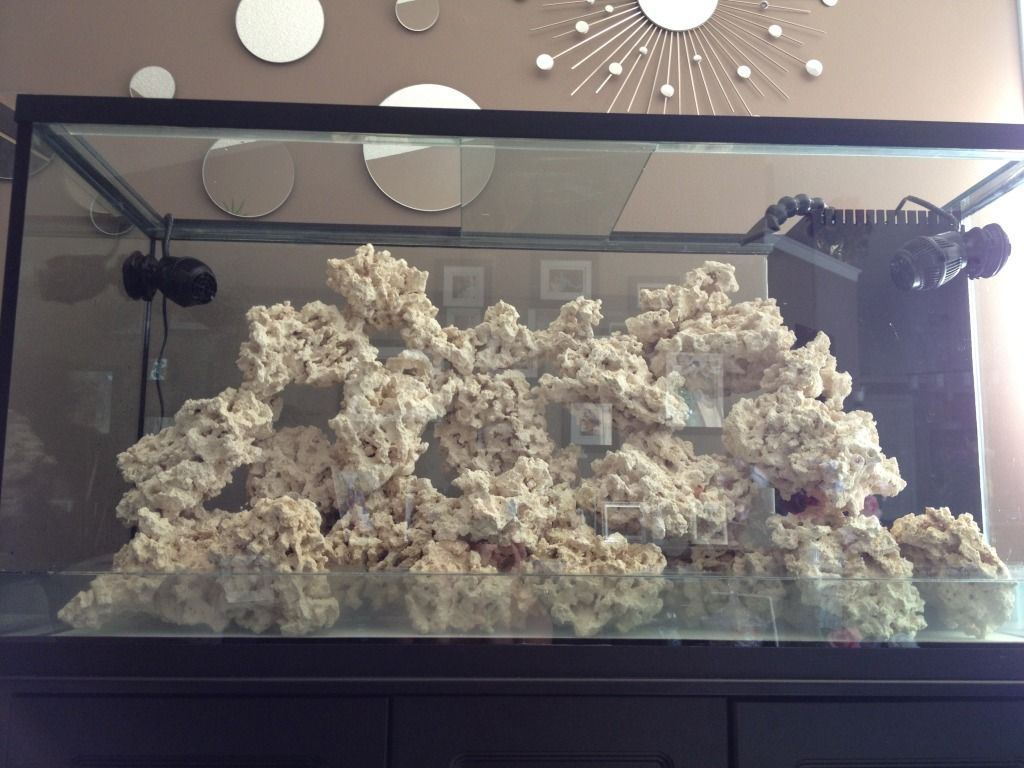 how to aquascape a reef aquarium | ... aquarium aquascape ...
