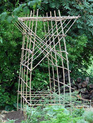 Trellis from bamboo trellises Pinterest