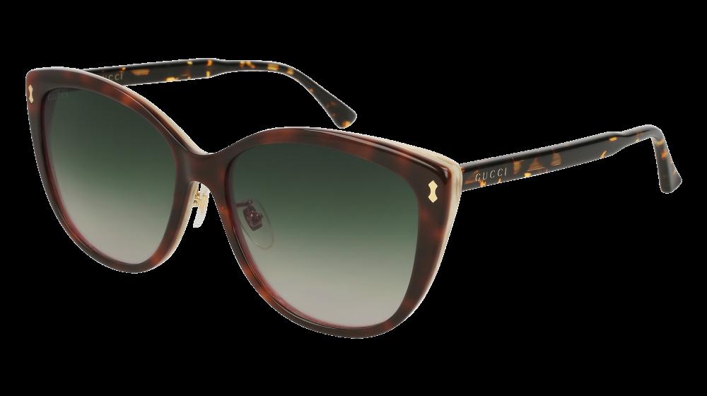 5cab848f946 Gucci - GG0193SK-004 Havana Sunglasses   Green Gradient Lenses ...