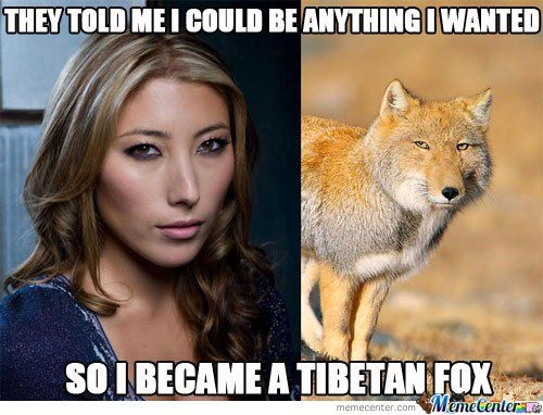 They Told Me I Could Be Anything I Wanted So I Became I Tibetan