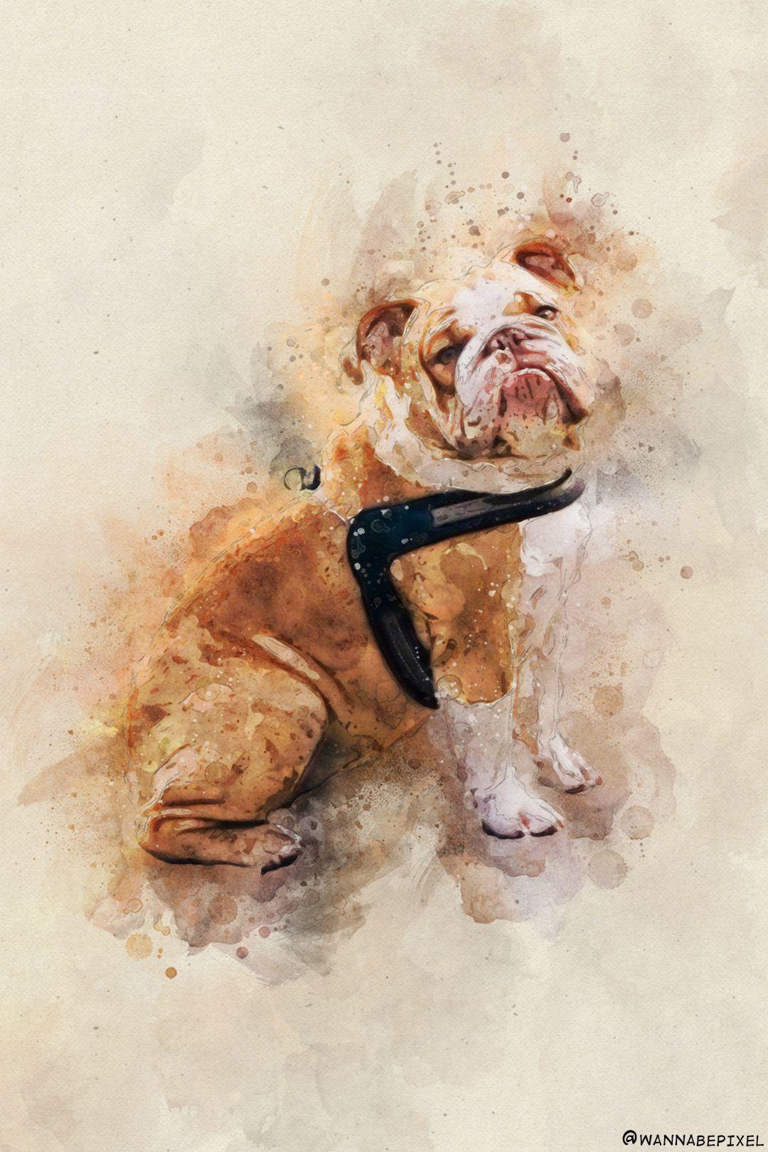 Custom Dog Pet Portrait Drawing Watercolor Corgi Bulldog In 2020 Dog Portrait Gift Animal Portraits Art Dog Themed Gifts
