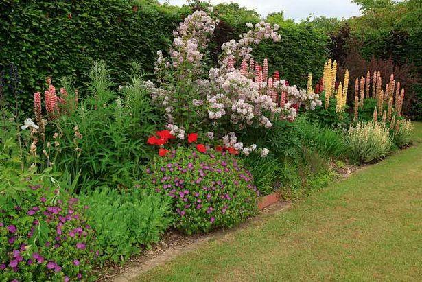 Garden Borders Ideas For Planting