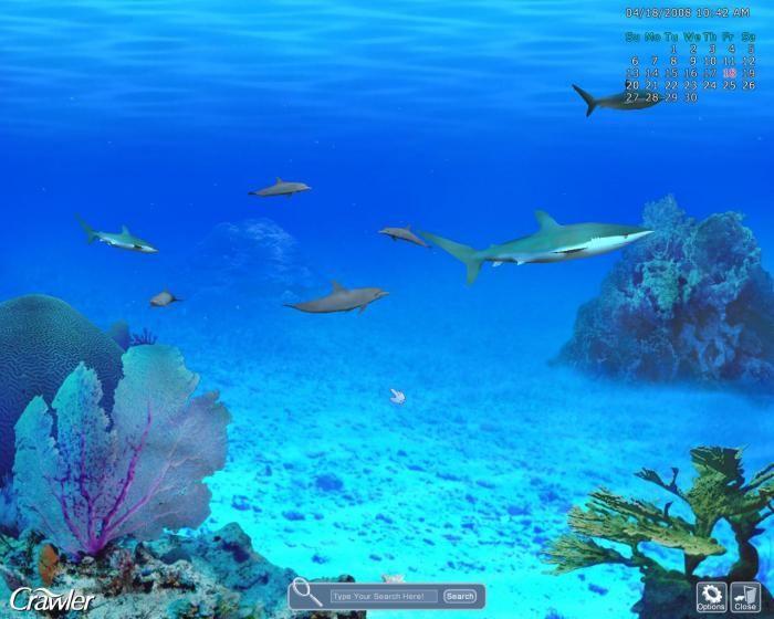 Crawler 3d marine aquarium descargar ok for Bajar fondos de pantalla 3d con movimiento