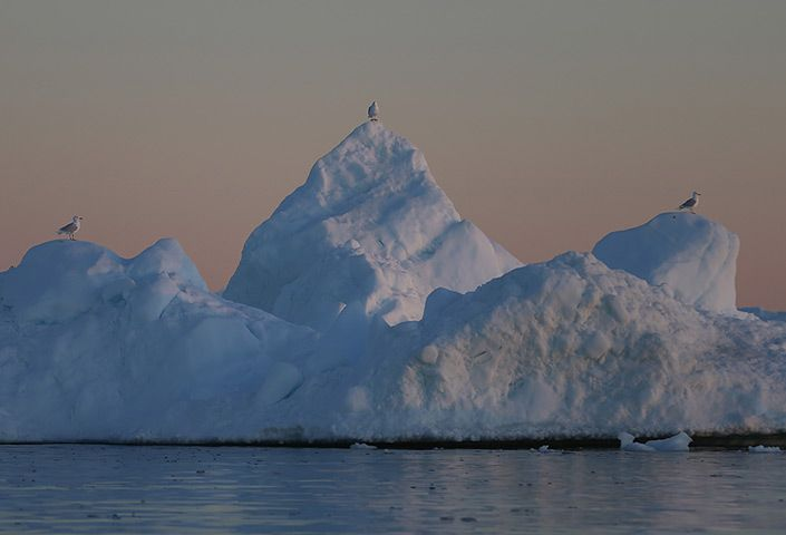 Greenland: Greenland:  A Laboratory For The Symptoms Of Global Warming