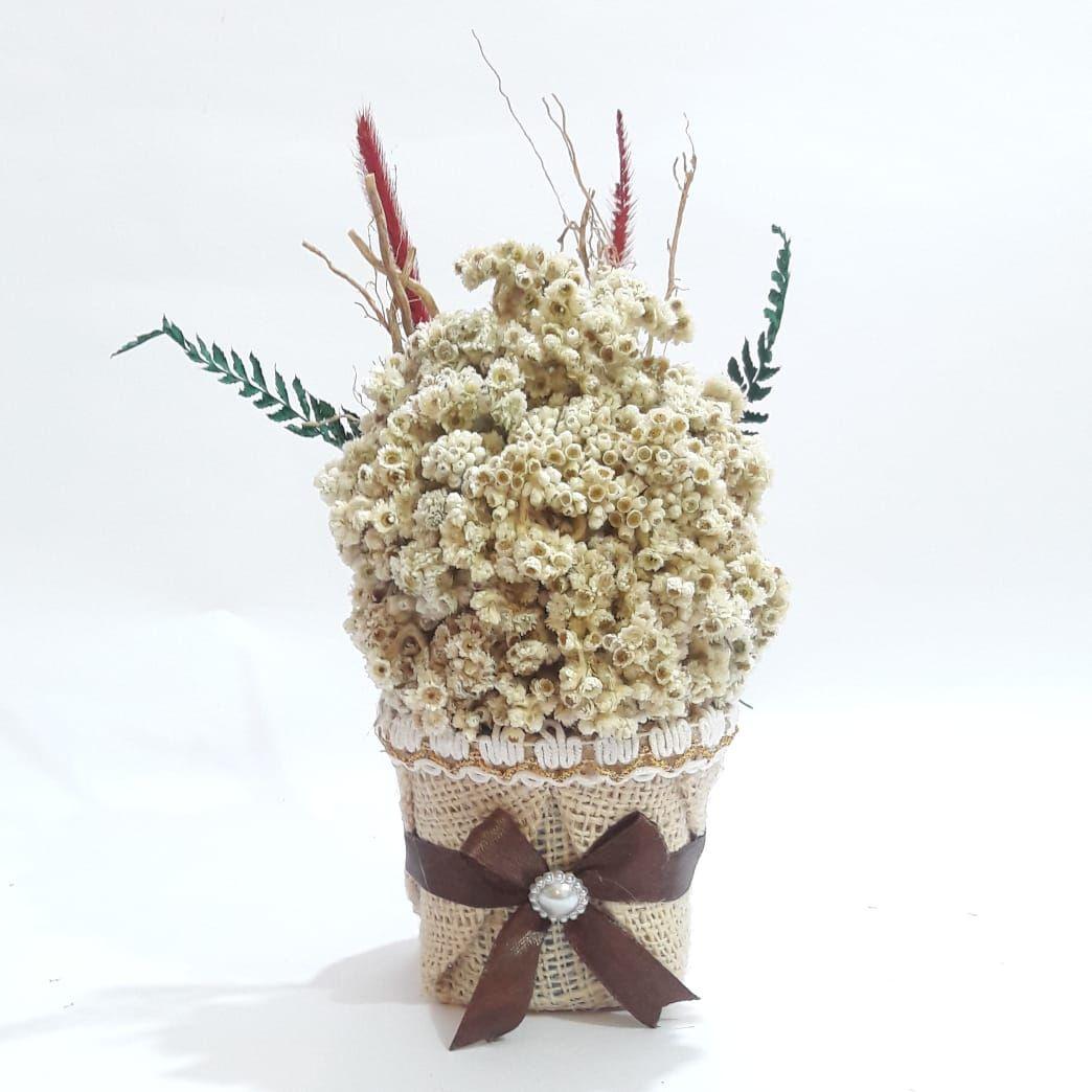 Bunga Edelweis Bunga Abadi Tipe Bunga Edelweis Pot Pita Eksklusif Cocok Sebagai Kado Unik Untuk Pasangan Atau Sahabat Anda Laki Laki Bunga Pita Pernikahan