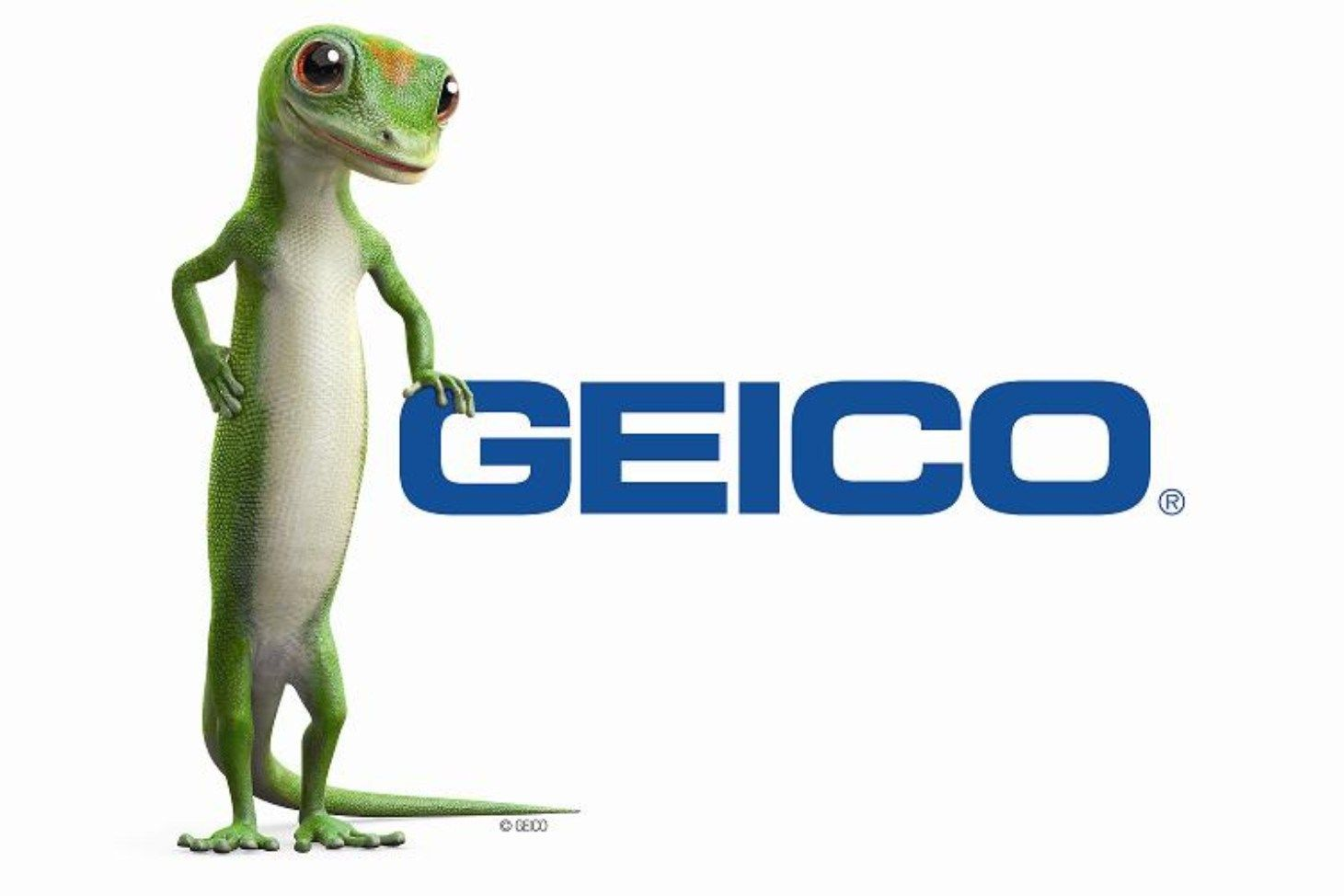 Geico Quotes Fair Geico Car Insurance Coverage And Online Claims  Quotedg  Blaze .