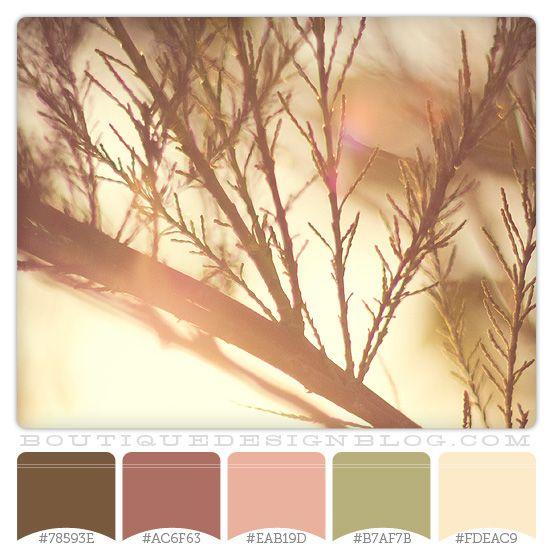 Cool Mauve Color Scheme Photography Photo Credit Pure Zen