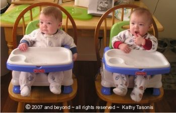 Twin Highchair Guide See Options For Highchairs For Twins High Chair Beach Chair Umbrella Baby High Chair