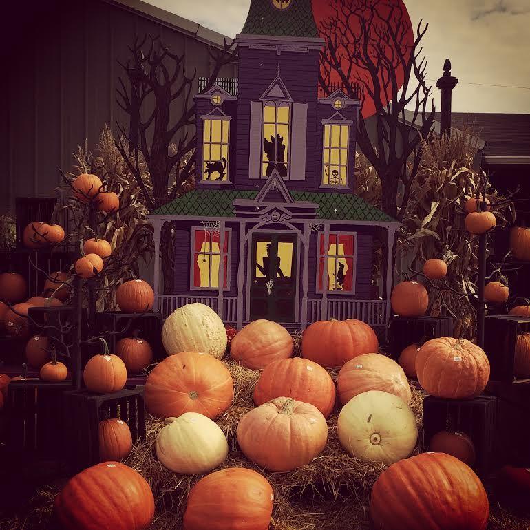 The produce station pumpkin patch pumpkin pumpkin