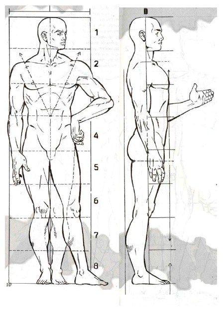 Bases Para El Dibujo Del Cuerpo Humano Cuerpo Humano Dibujo Proporciones Del Cuerpo Humano Bocetos Del Cuerpo Humano