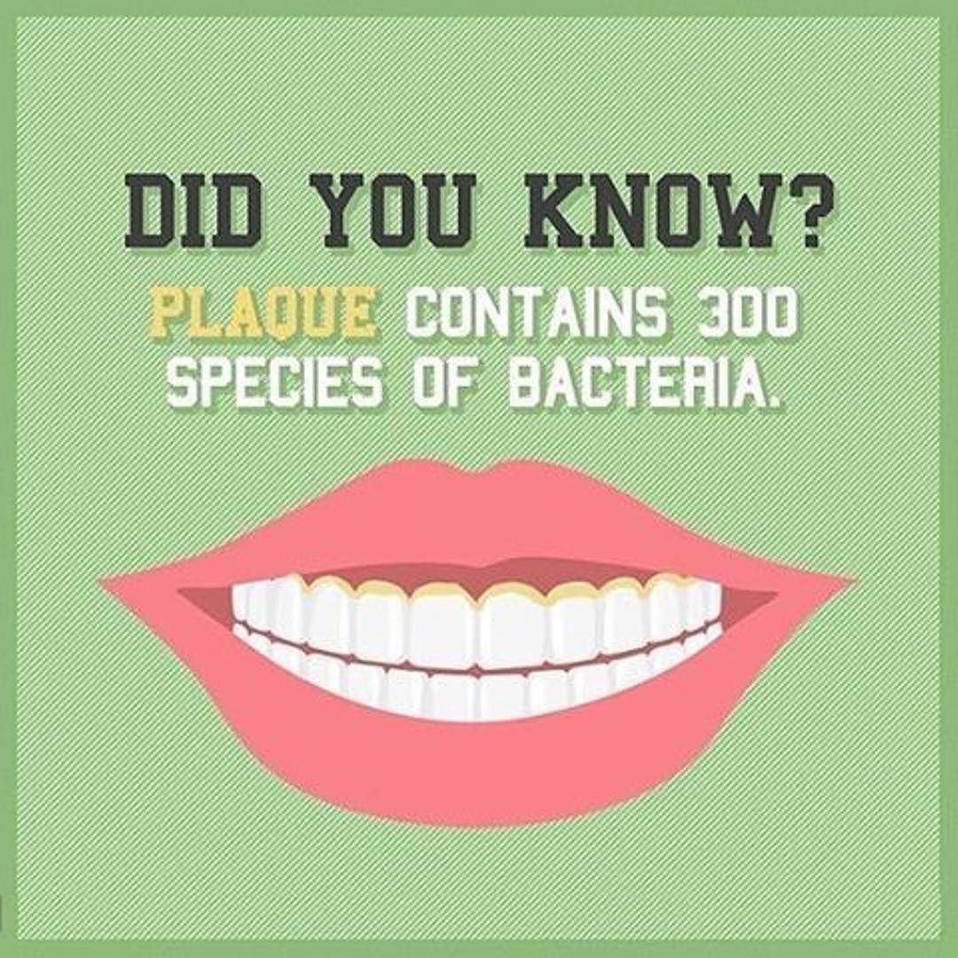 Here is some Motivation to Floss everyday! DYK