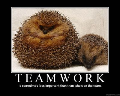 Teamwork Funny Motivational Quotes for Work Learn More ...