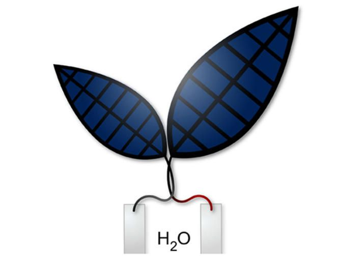 This 'bionic leaf' converts sunlight and water into fuel http://www.cnet.com/news/this-bionic-leaf-converts-sunlight-and-water-into-fuel/ UniHarvard
