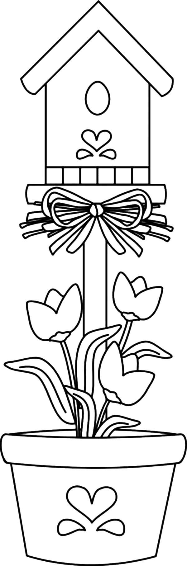 Bird House, : Bird House Planted in Pot Coloring Pages | Screen ...