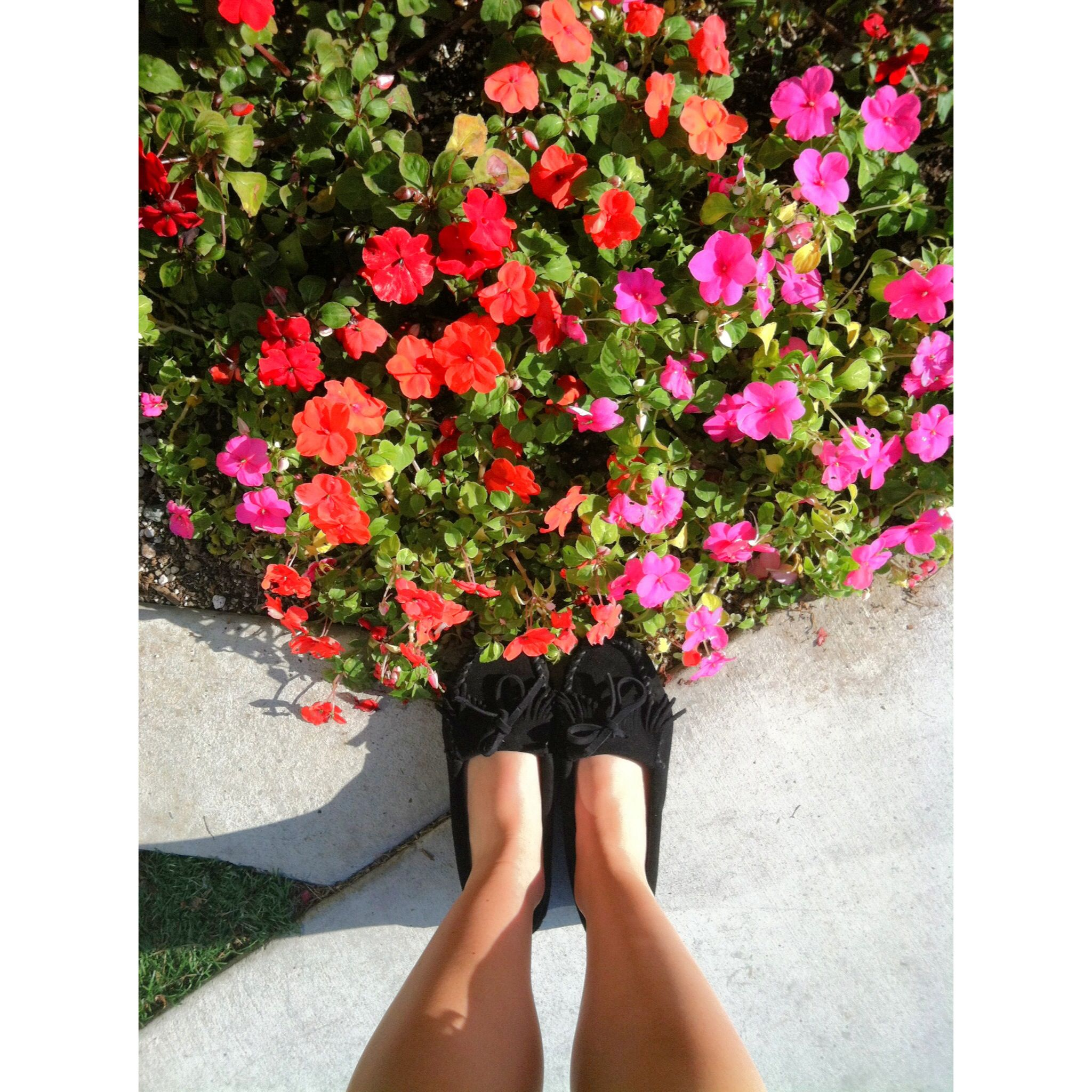 These #black #minnetonka #moccasins are now available at @Pangaea Outpost in #pacificbeach! @Minnetonka Moccasin #minnetonkamoccasins #shoes #dragonflycali #pangaeaoutpost