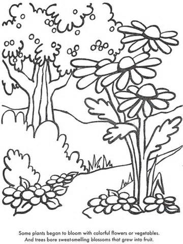 Luxury Coloring Pages Trees Plants And Flowers
