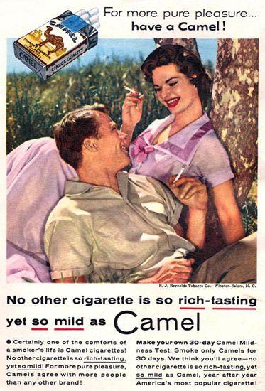 Smoking camel sex