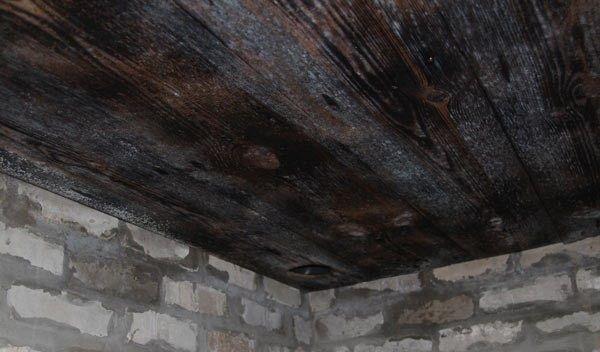 как удалить плесень в подвале