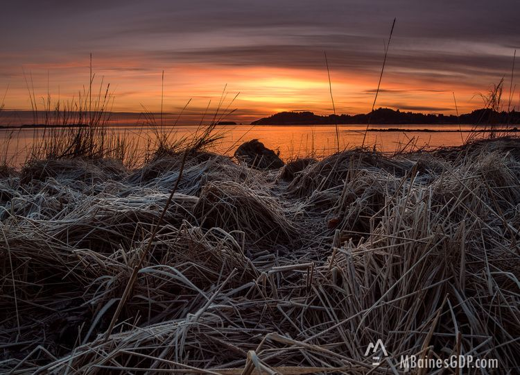 Sunrise Over Women S Bay At Jewel Beach In Kodiak Alaska The Tall Grass Is Covered In Frost Image By Mel Graphic Design Photography Morning Sunrise Fine Art