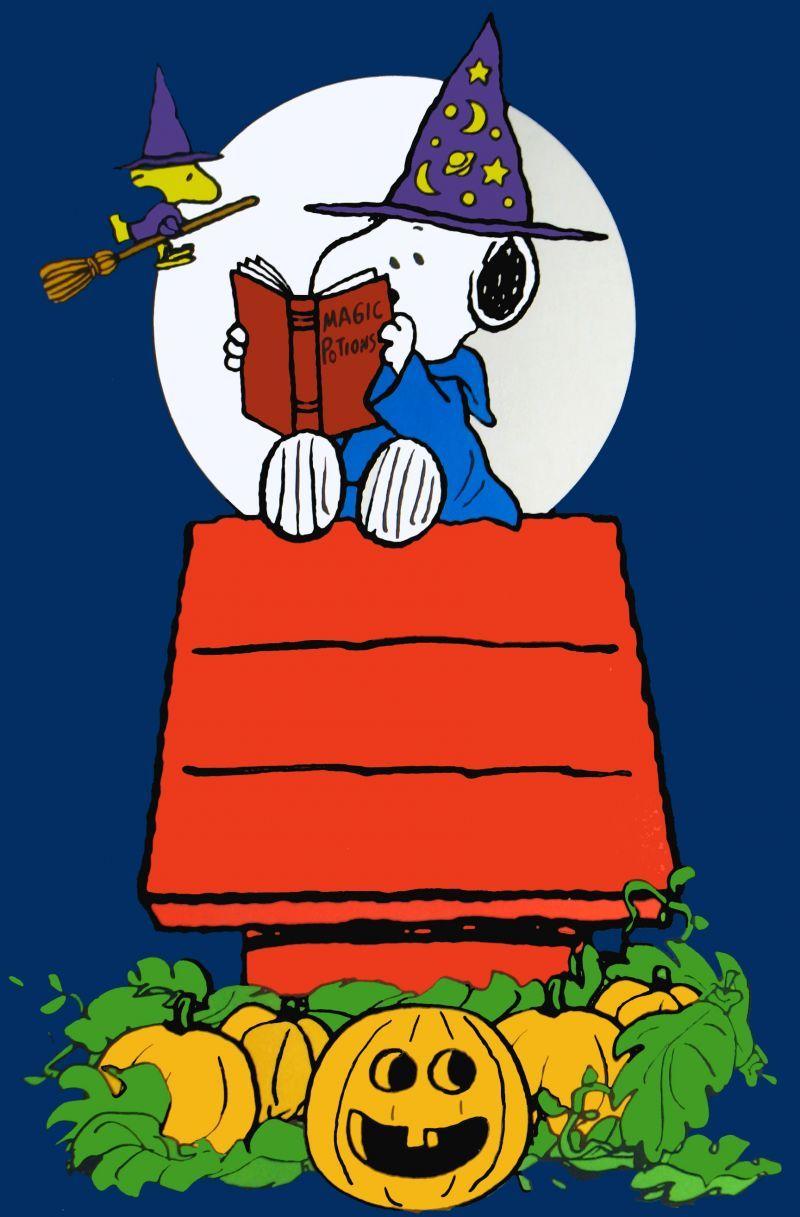 Pin De トウコ En スヌーピー Fondo De Pantalla Snoopy Snoopy Dibujos Imagenes De Snoopy