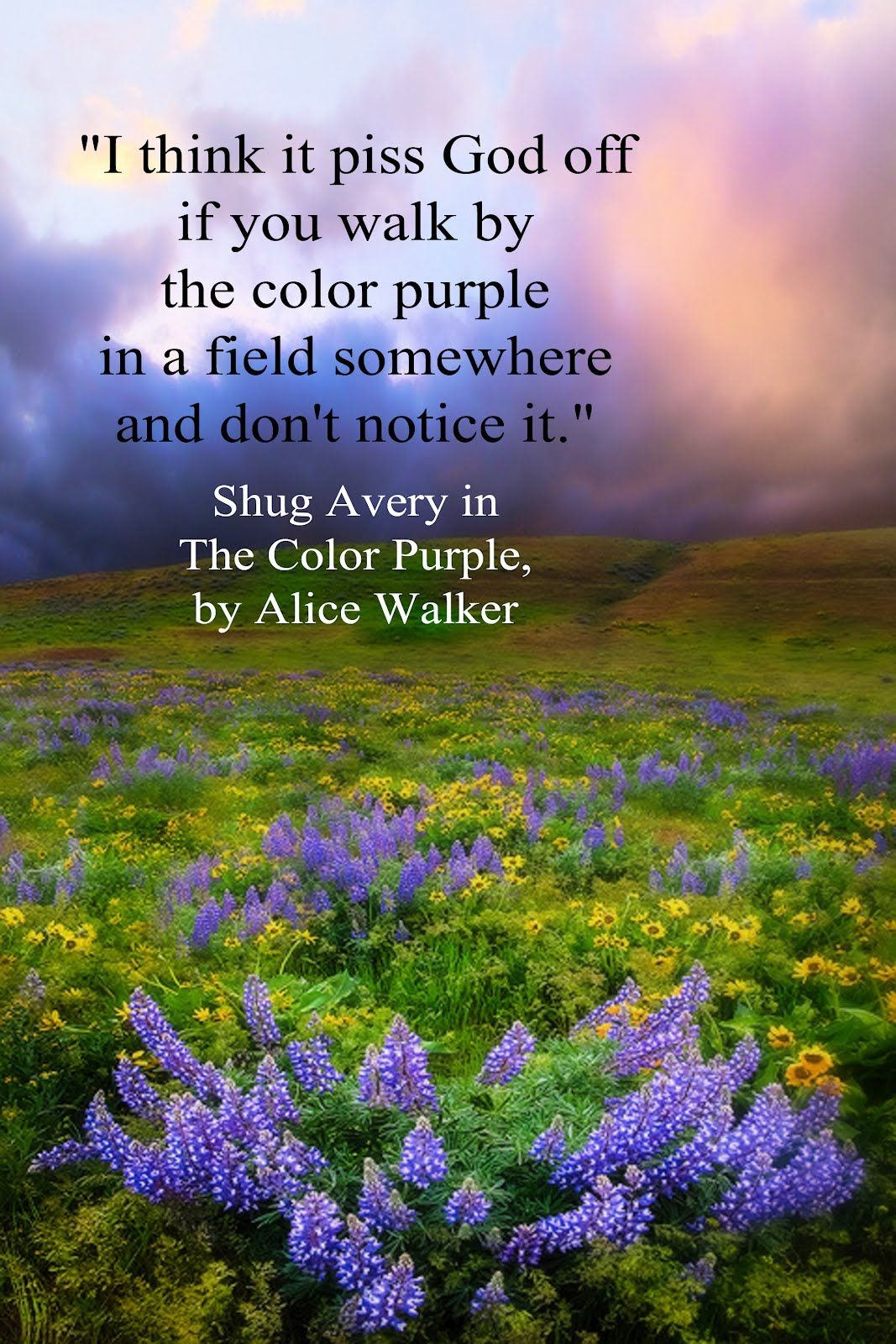 an analysis of literary devices in the color purple by alice walker In the color purple, celie is abused by her father, and husband she leaves her father by marrying mr _____, and leaves mr _____ after he abuses her.
