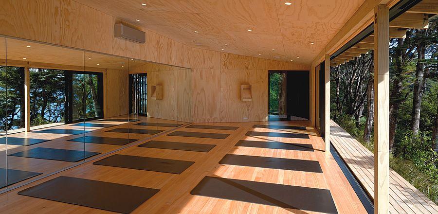 Days Bay Yoga Studio Yoga Studio Yoga Studio