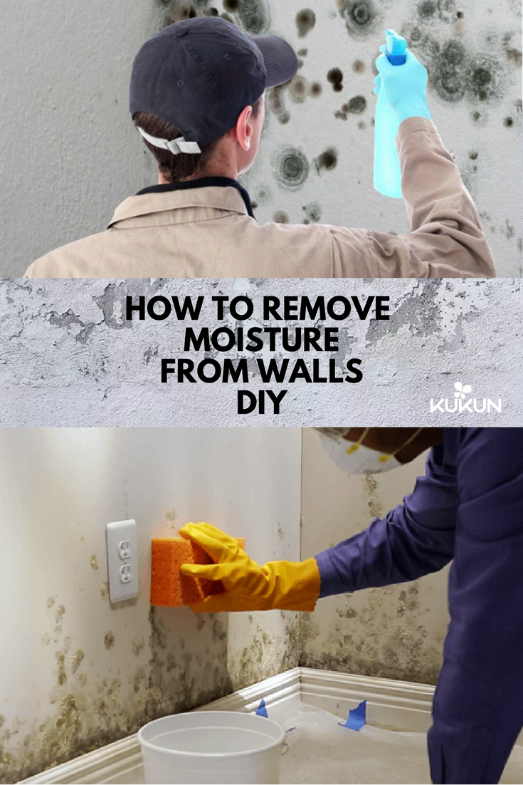How To Remove Moisture From Walls DIY Walls Bathroom Designs And - How to remove moisture from bathroom