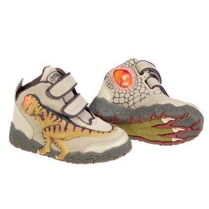 Dinosoles