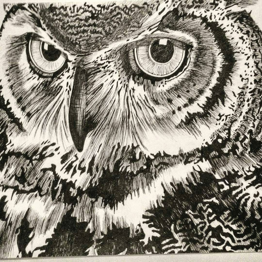 Masterpiece greta job. Credit :  @tteohpoetry -  So I asked my man to draw me an owl.. Is he talented or what? . #owl #owls #owllove