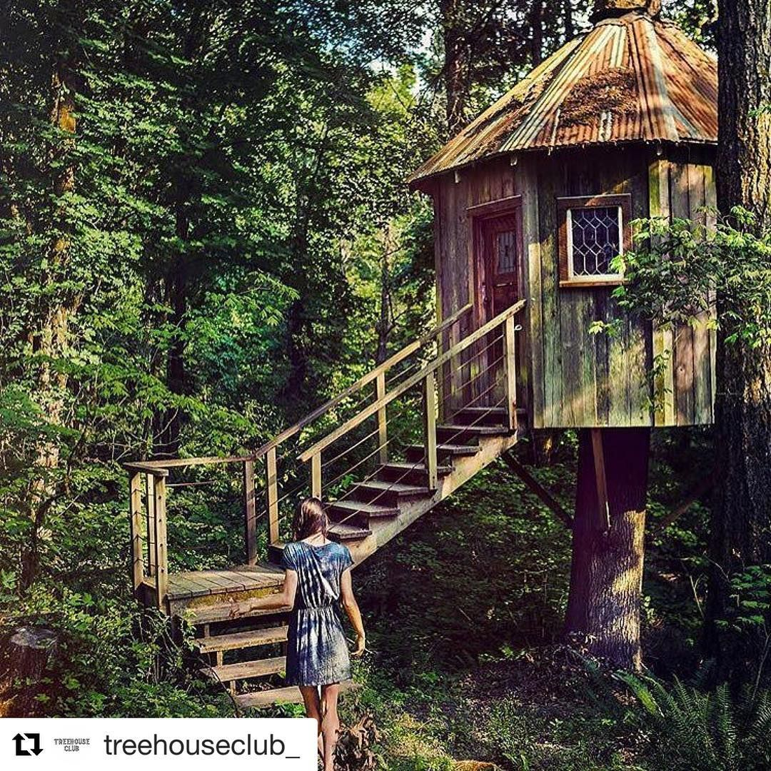 "The•Treehouse•Perspective On Instagram: ""Sharing A Post Of"