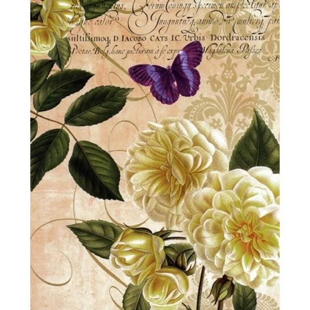 Editions Limited Golden Roses Poster Print by Paula Scaletta (16 x 20)