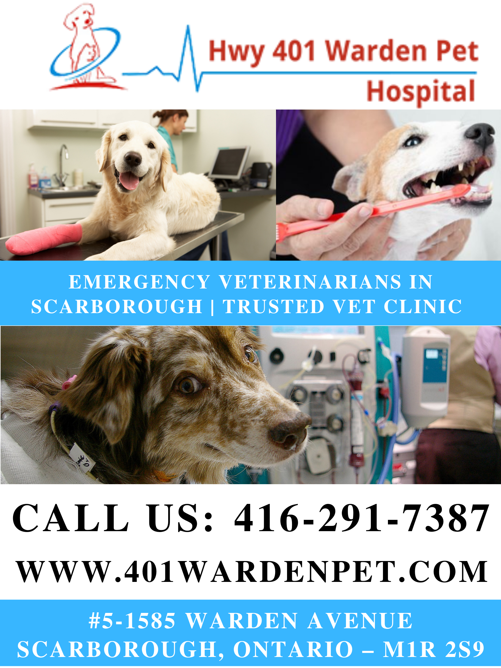 Emergency Veterinarians In Scarborough Trusted Vet Clinic Animal Hospital Vet Clinics Pet Clinic