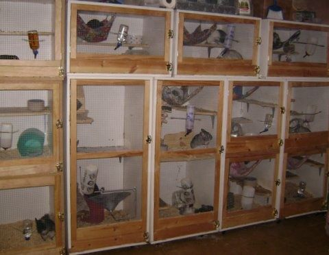 Homemade Chinchilla Cages Plans - Homemade Ftempo