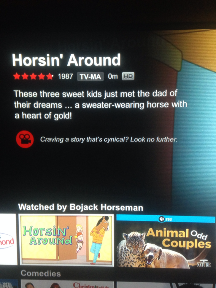 Netflix has a watched by Bojack horseman section and